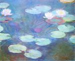 Water Lilies, Pink