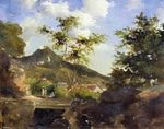 Village at the foot of a hill in Saint-Thomas Antilles 1855